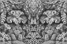 Load image into Gallery viewer, Wall Mural lifestyle image of Coral Illustration in Black & White color, printed on wallpaper. Custom options available.