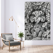 Load image into Gallery viewer, Corals Colossal Art Print