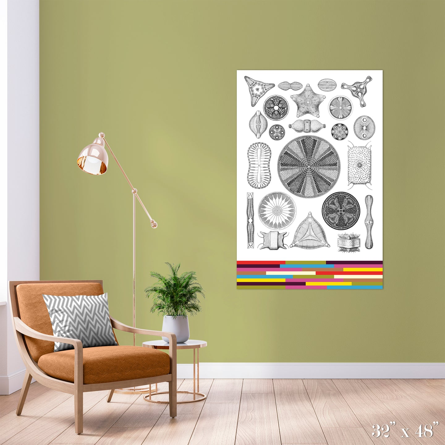 Diatoms Colossal Art Print