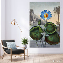 Load image into Gallery viewer, Egyptian Waterlily Colossal Art Print