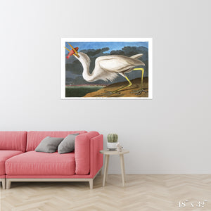 Great White Heron Colossal Art Print