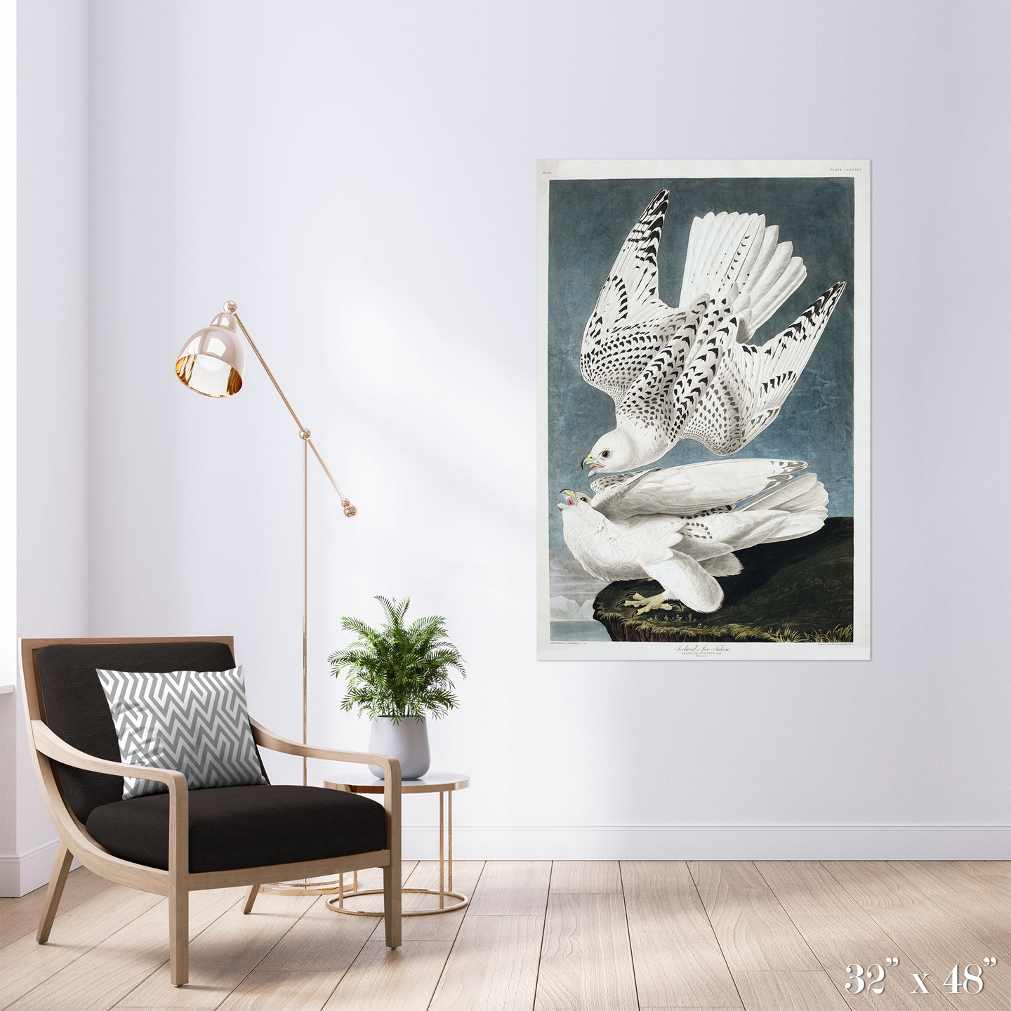Iceland Falcons Colossal Art Print