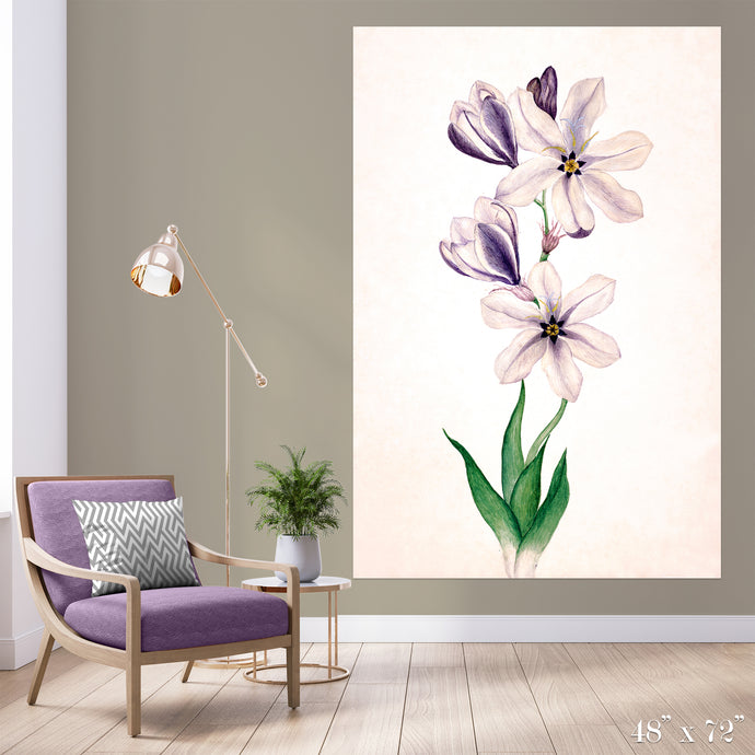 Ixia Colossal Art Print