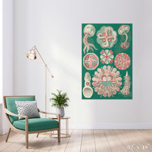 Load image into Gallery viewer, Jellyfish in Green Colossal Art Print