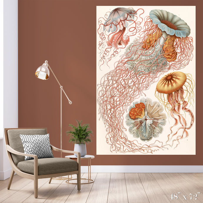 Jellyfish Colossal Art Print