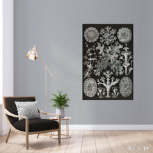 Load image into Gallery viewer, Lichen Colossal Art Print