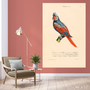 Oiseau Colossal Art Print