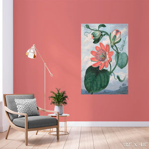 Passion Flower Colossal Art Print