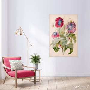Poppies Colossal Art Print