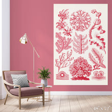 Load image into Gallery viewer, Red Algae Colossal Art Print