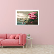Load image into Gallery viewer, Roseate Spoonbill Colossal Art Print