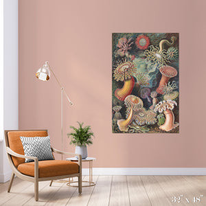 Sea Anemones Colossal Art Print