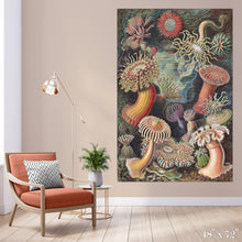 Load image into Gallery viewer, Sea Anemones Colossal Art Print