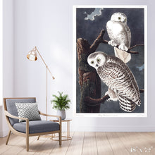 Load image into Gallery viewer, Snowy Owl Colossal Art Print