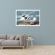 Load image into Gallery viewer, Tropic Birds Colossal Art Print