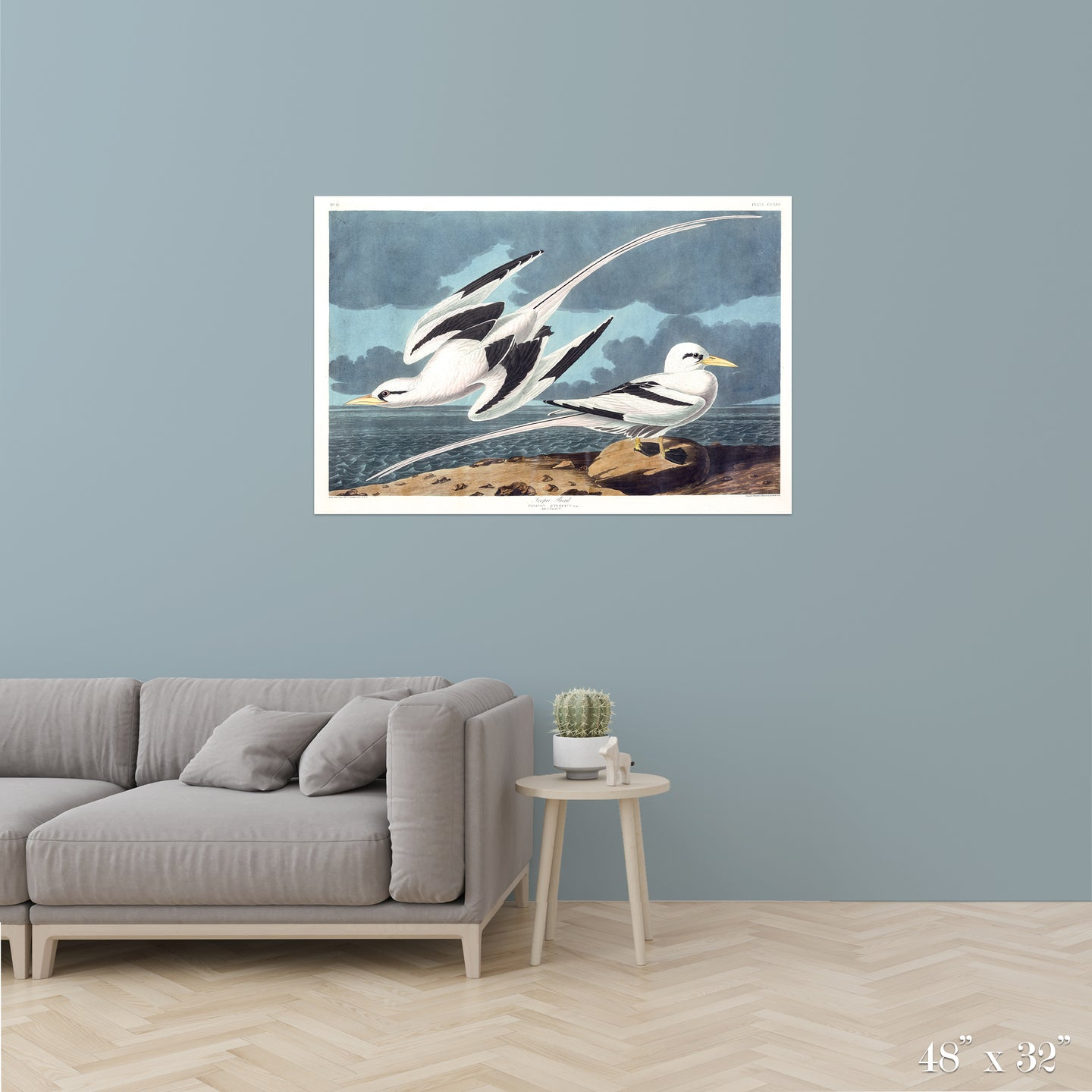 Tropic Birds Colossal Art Print