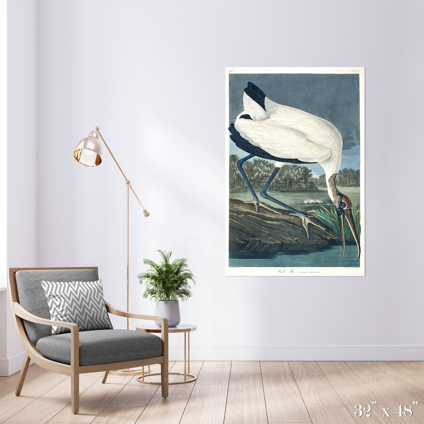 Wood Ibis Colossal Art Print