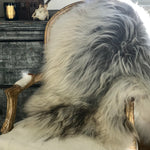 Rare Breed Long Haired Sheepskin
