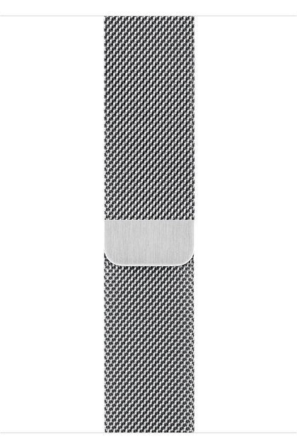 Apple 40mm Stainless Steel Milanese Loop