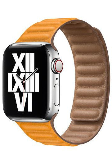 Apple 40mm California Poppy Leather Link - M/L