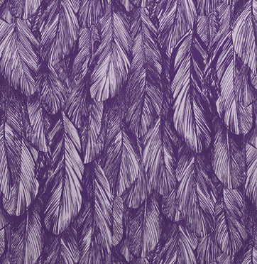 Sample Feather Wallpaper Purple 5152