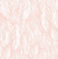 Sample Feather Wallpaper Pink 5153