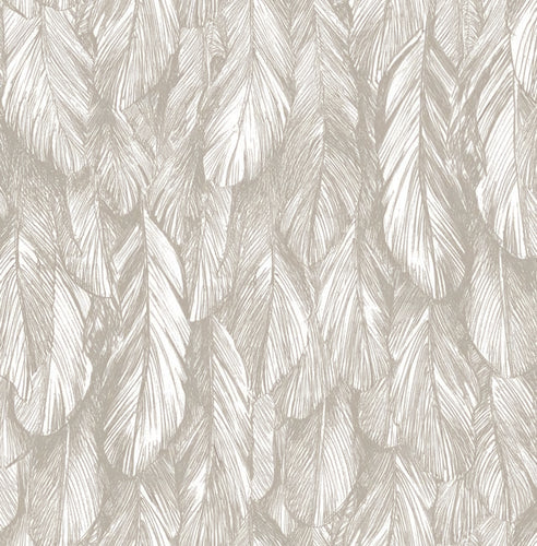 Sample Feather Wallpaper Light Khaki  5154