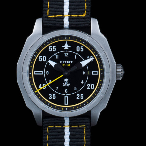 first prototype f-14 pitot watches