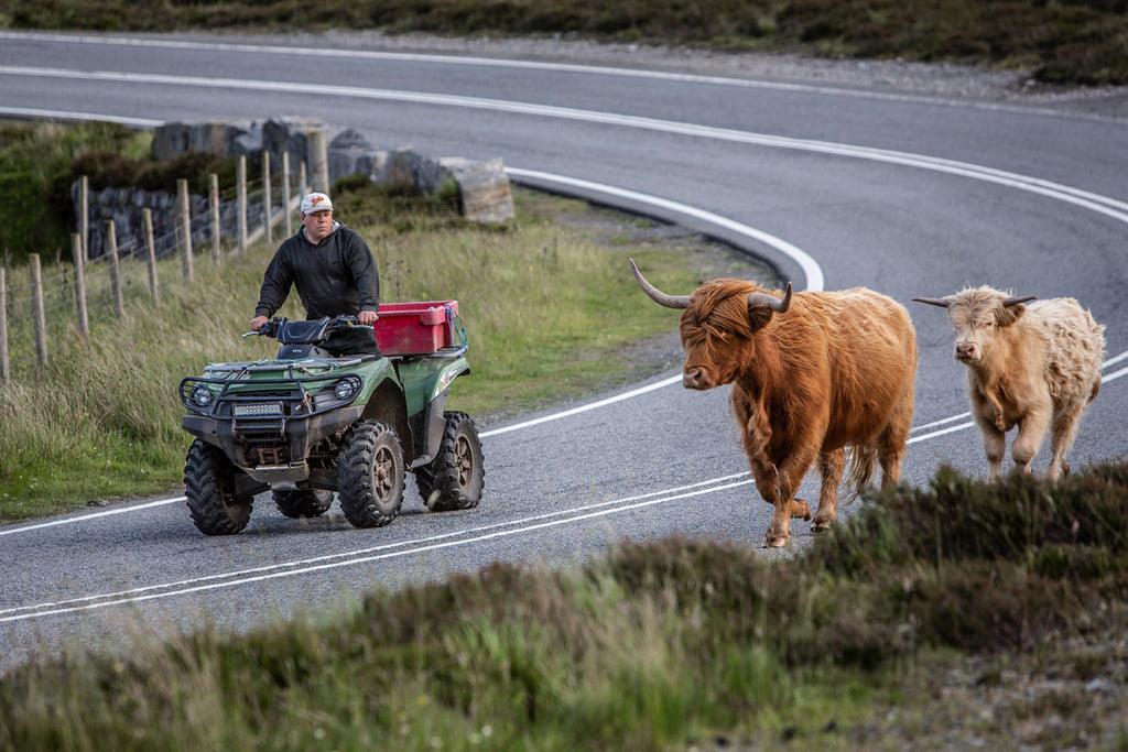 The roads of Harris have been quieter than usual this summer...