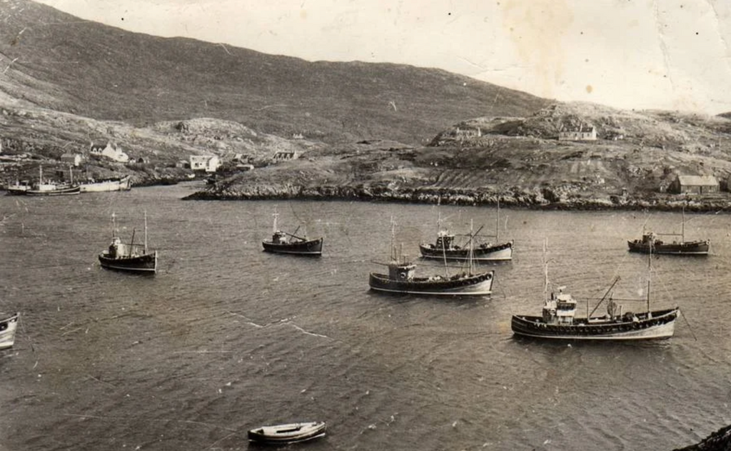 Herring boats and ring-netters, North Harbour, Scalpay 1960s.