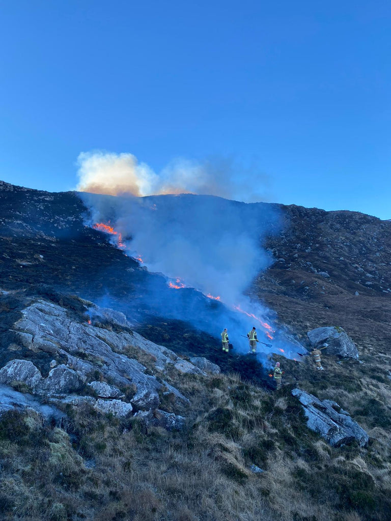 Local fire crews work hard to keep things under control. Image © Stevie Passmore
