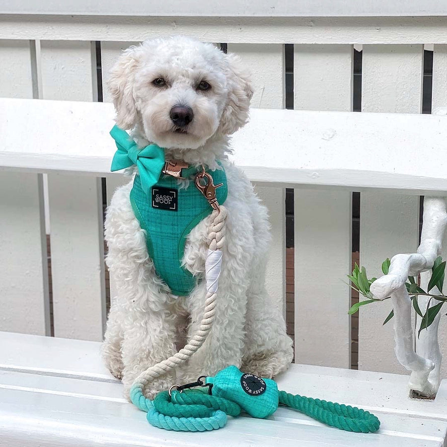 Waste Bag Holder - Wag Your Teal