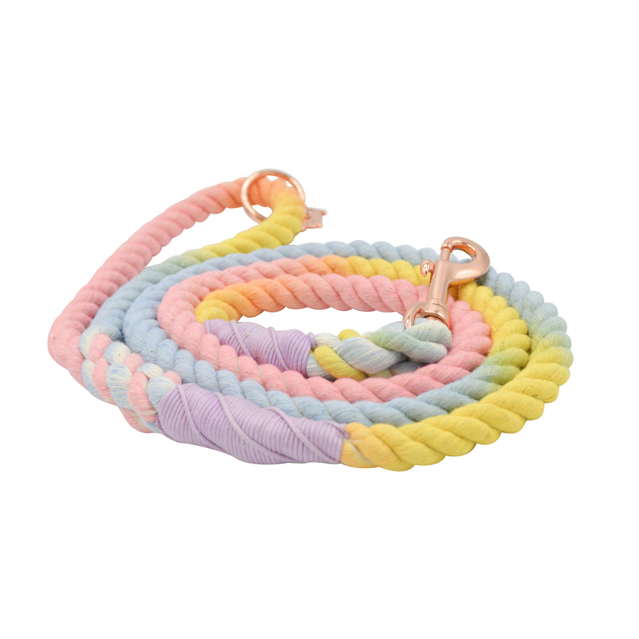 Rope Leash - Fiesta