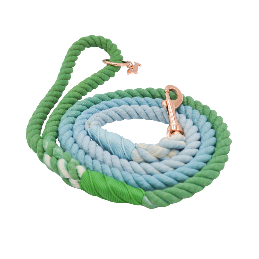 Rope Leash - Minty