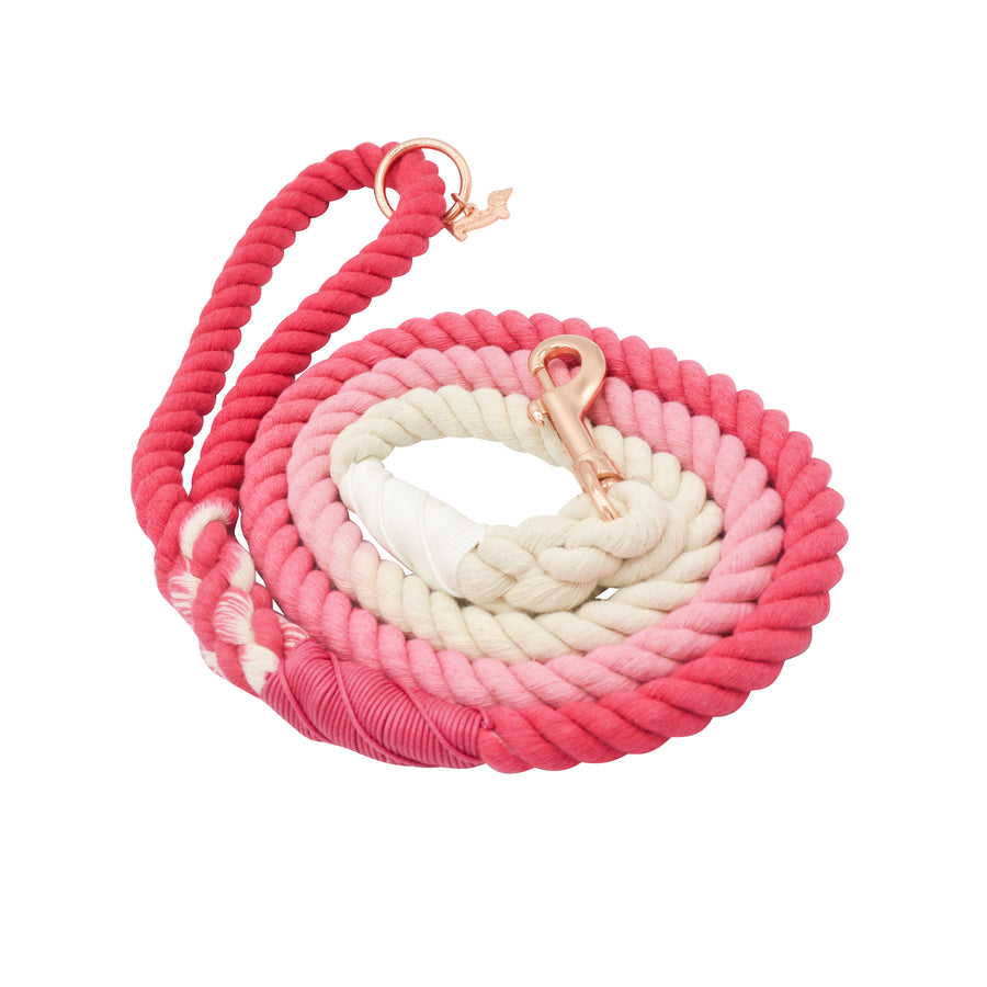 Rope Leash - Ombre Pink