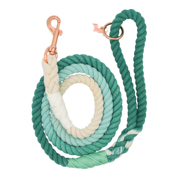 Rope Leash - Ombre Teal