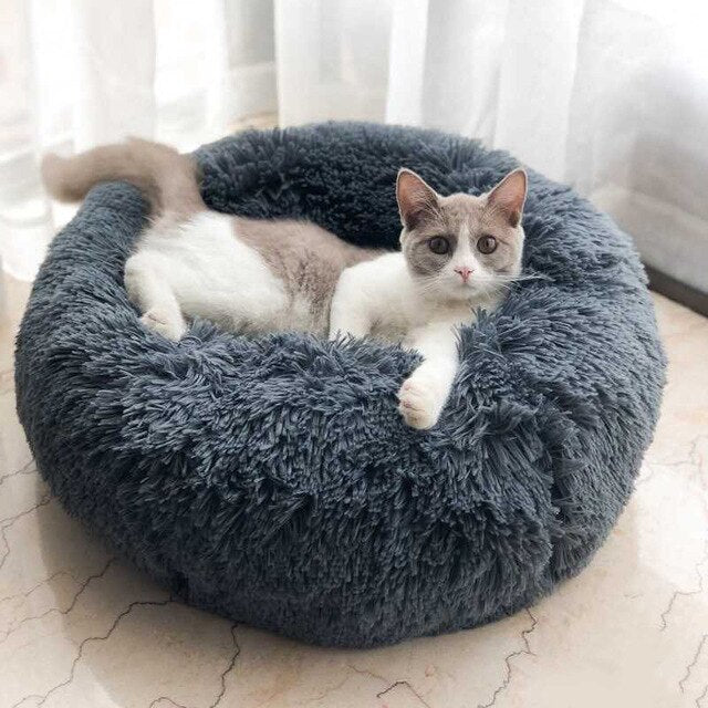 Comfy-n-Fluffy Cotton Pet Bed