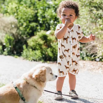 Dog Print Shortall