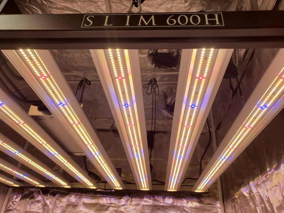 Slim 600H 600w Vertical Farming Dimmable LED Grow Light