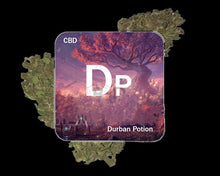 Load image into Gallery viewer, DURBAN POTION