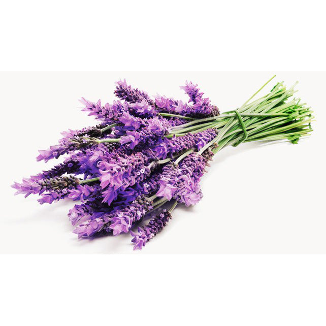 Angel's Mist Lavender Essential Oil