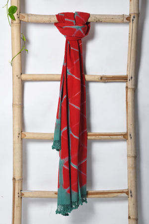 Handwoven Kala Cotton Clamp dyed Stole - EARTHICA