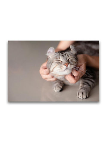 Adorable Kitty Getting Some Love Poster -Image by Shutterstock