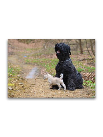 Russian Terrier And Tiny Husky Poster -Image by Shutterstock