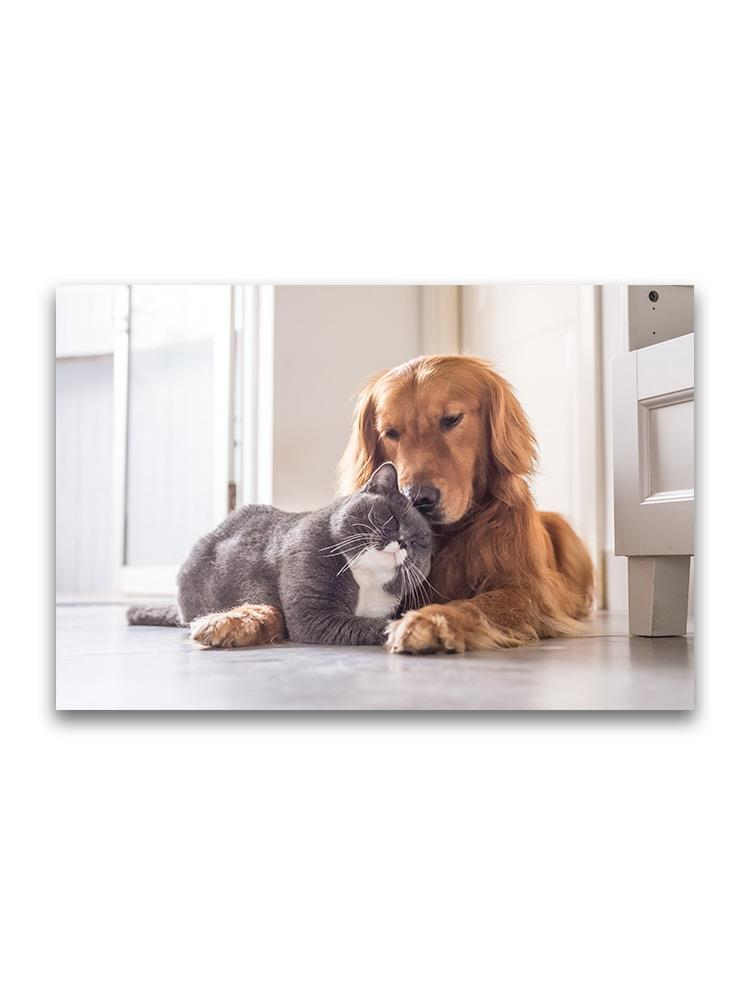 Loving House Pets Cat And Dog Poster -Image by Shutterstock
