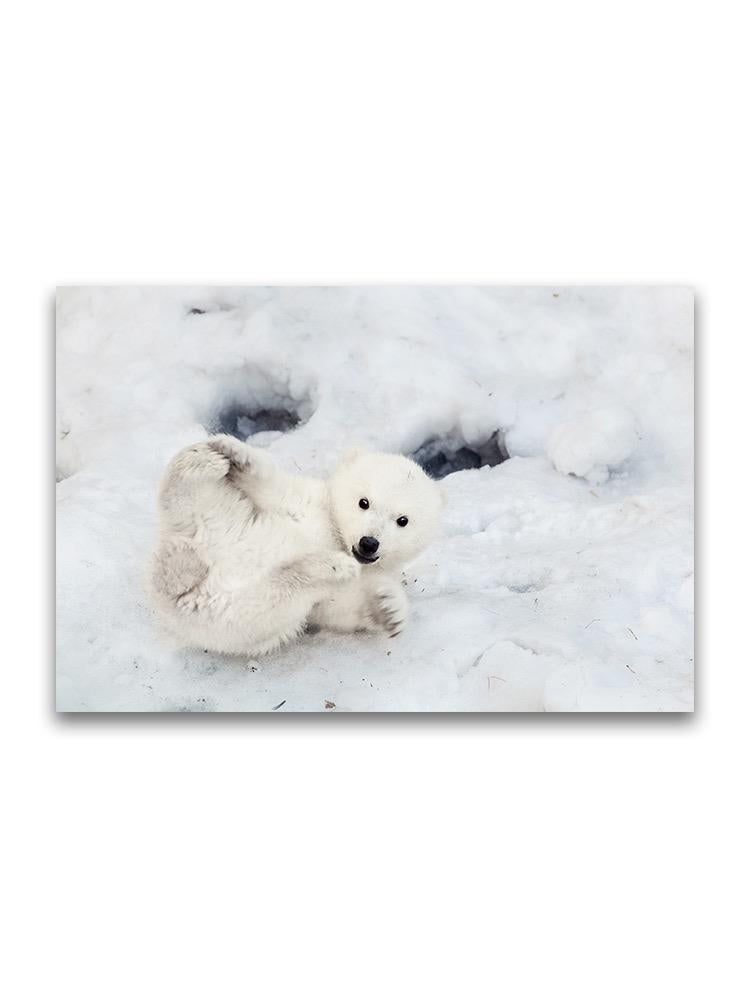Polar Bear Playing In The Snow Poster -Image by Shutterstock