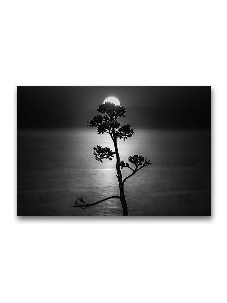 A Tree And The Sun Over The Sea Poster -Image by Shutterstock