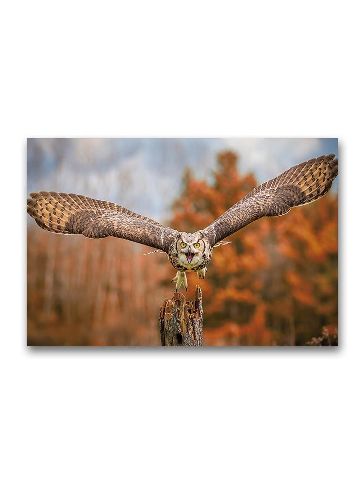 Flying Grey Horned Owl Poster -Image by Shutterstock