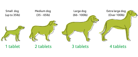 Tablets feeding guidelines