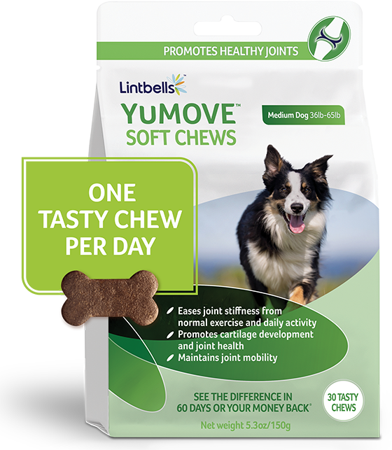 Bag of YuMOVE chews
